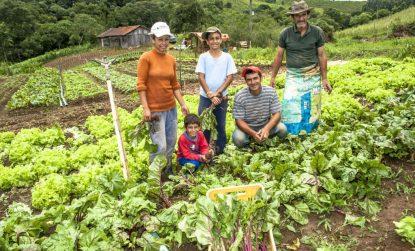 Estado anuncia repasse de quase R$ 12 milhões para compra de alimentos da agricultura familiar