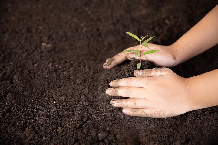 Conheça os trabalhos de conservação do solo desenvolvidos pelo Incaper