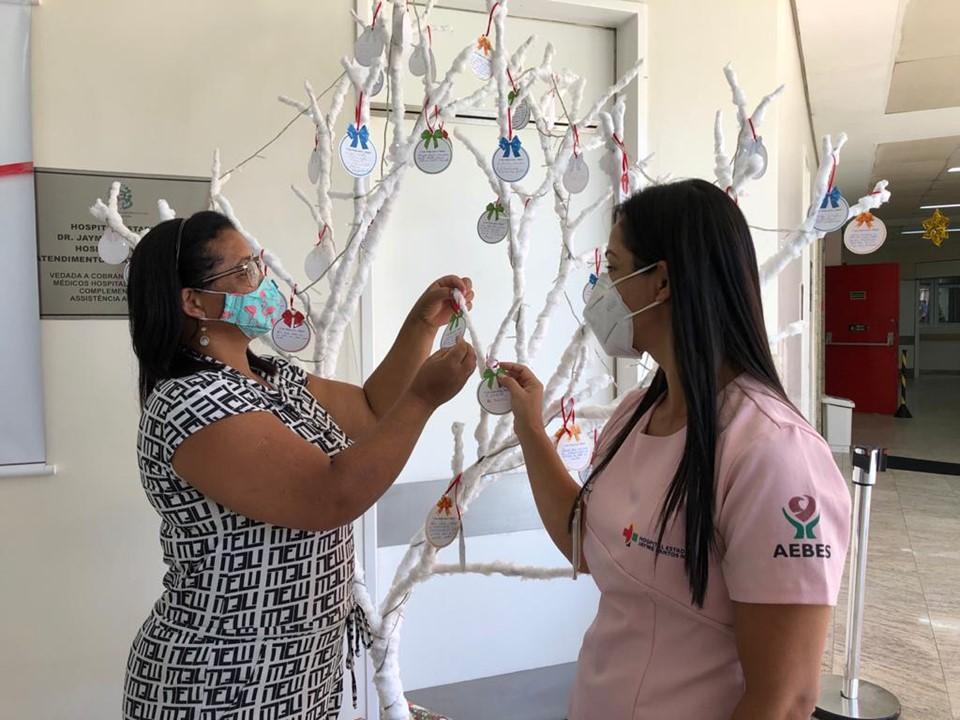 Árvore da Esperança: Hospital Jayme estreita os laços com familiares de pacientes
