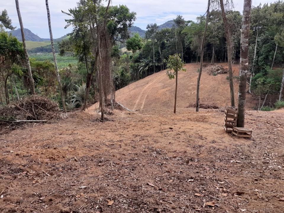 Idaf: áreas são embargadas em Rio Novo do Sul por desmatamento