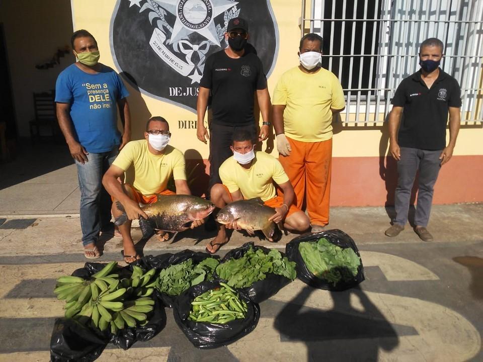 Penitenciária Agrícola cultiva solidariedade com doações