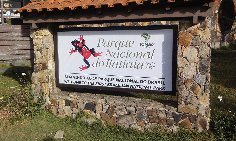 Pesquisadores reencontram dois anfíbios desaparecidos em Itatiaia