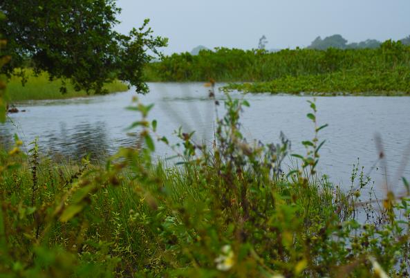 Oficina Final do Plano de Ações da Região Hidrográfica Litoral Centro-Norte será nesta quarta-feira (25)