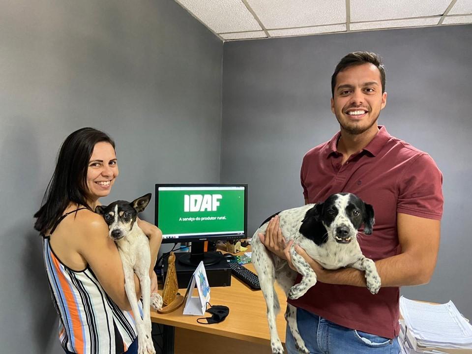 Servidores adotam pets que levam alegria ao Idaf