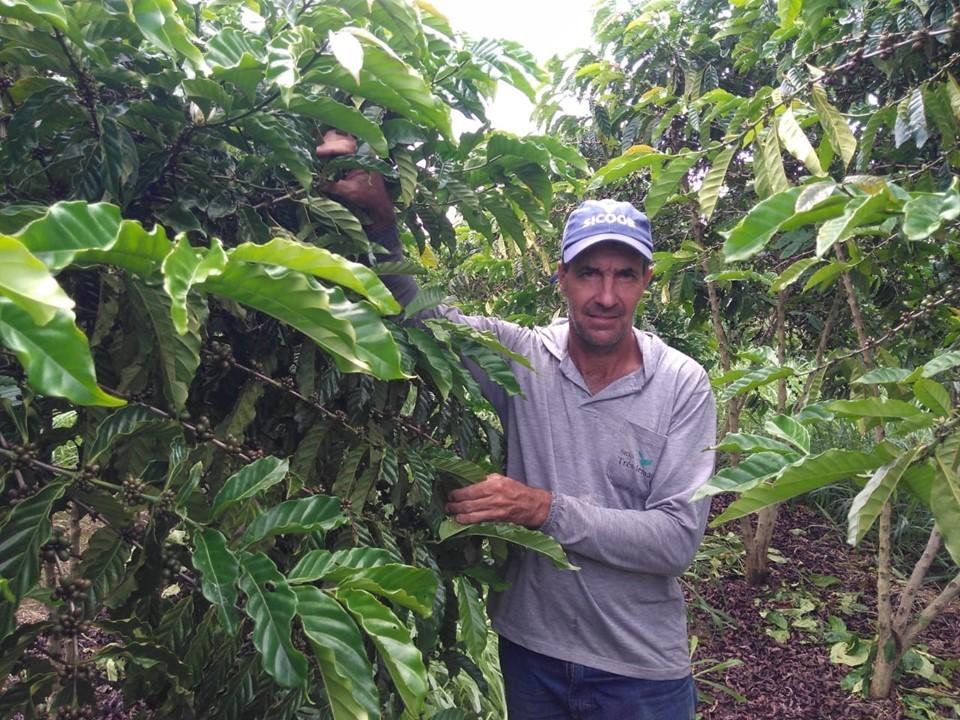 Produção de café sustentável e tecnológica recebe suporte do Incaper em Sooretama