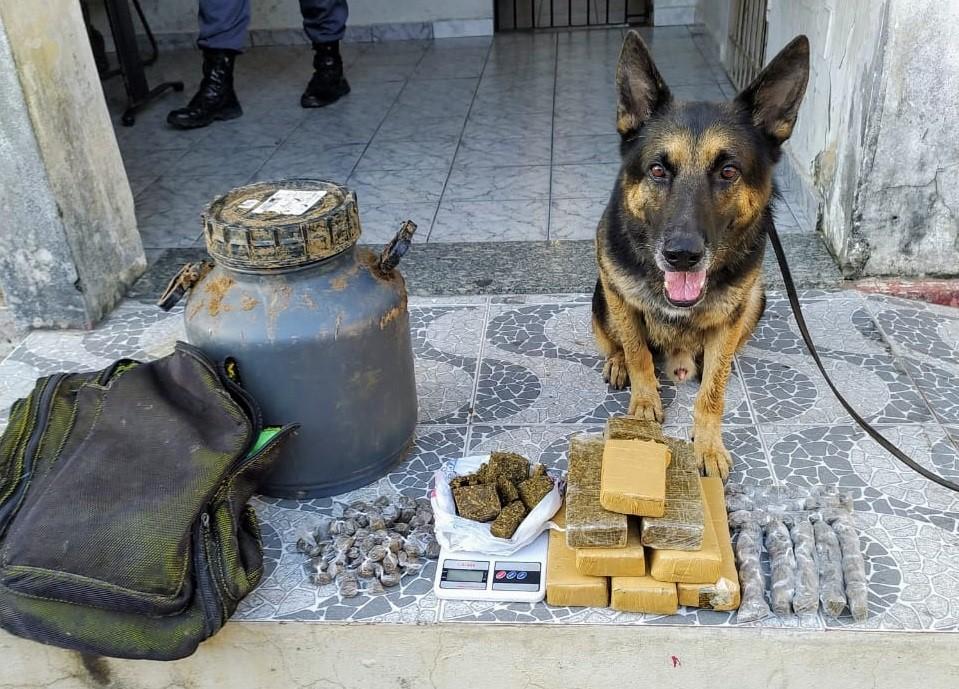 13º Batalhão apreende grande quantidade de droga em São Mateus e Conceição da Barra
