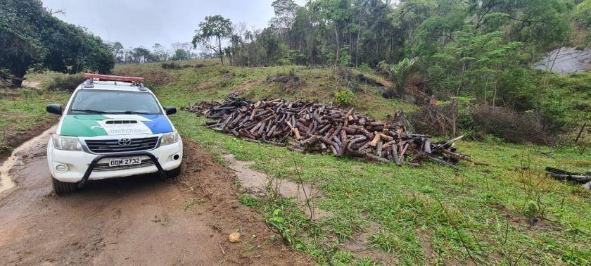 PM constata desmate de vegetação nativa na zona rural de Barra de São Francisco